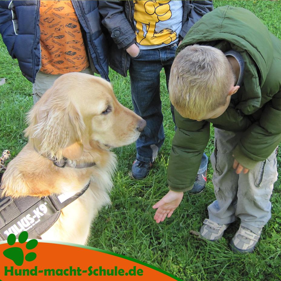Schulhund im Einsatz - Schulhundeausbildung