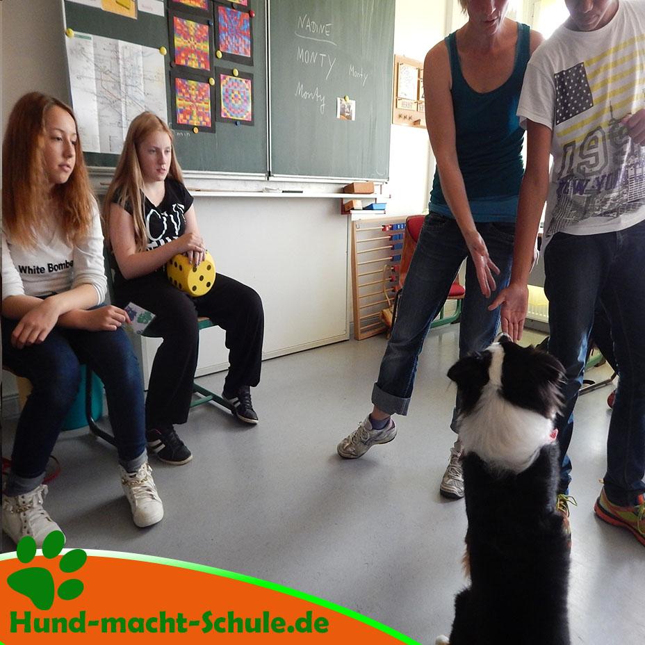 Besuchshund Monty Magdeburg14