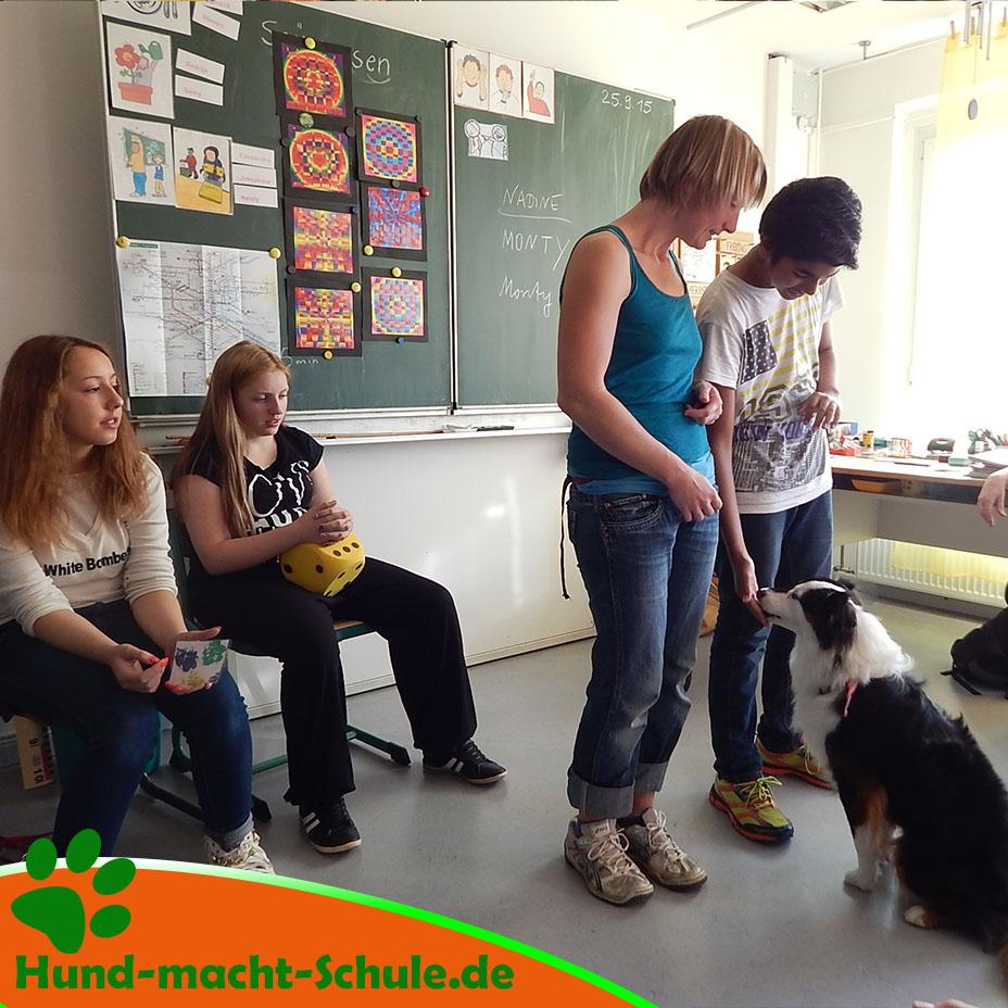 Besuchshund Monty Magdeburg15