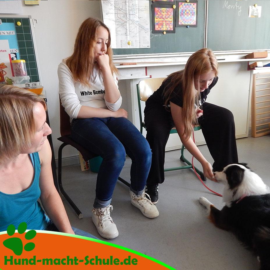 Besuchshund Monty Magdeburg4