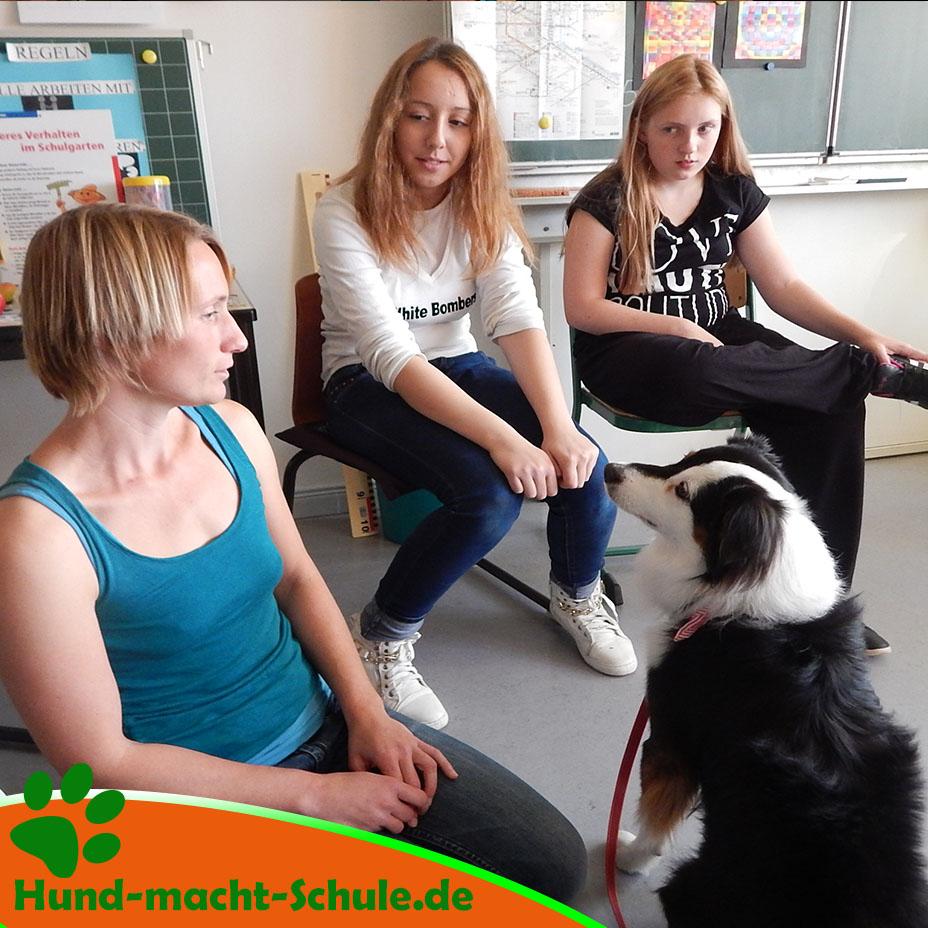 Besuchshund Monty Magdeburg6