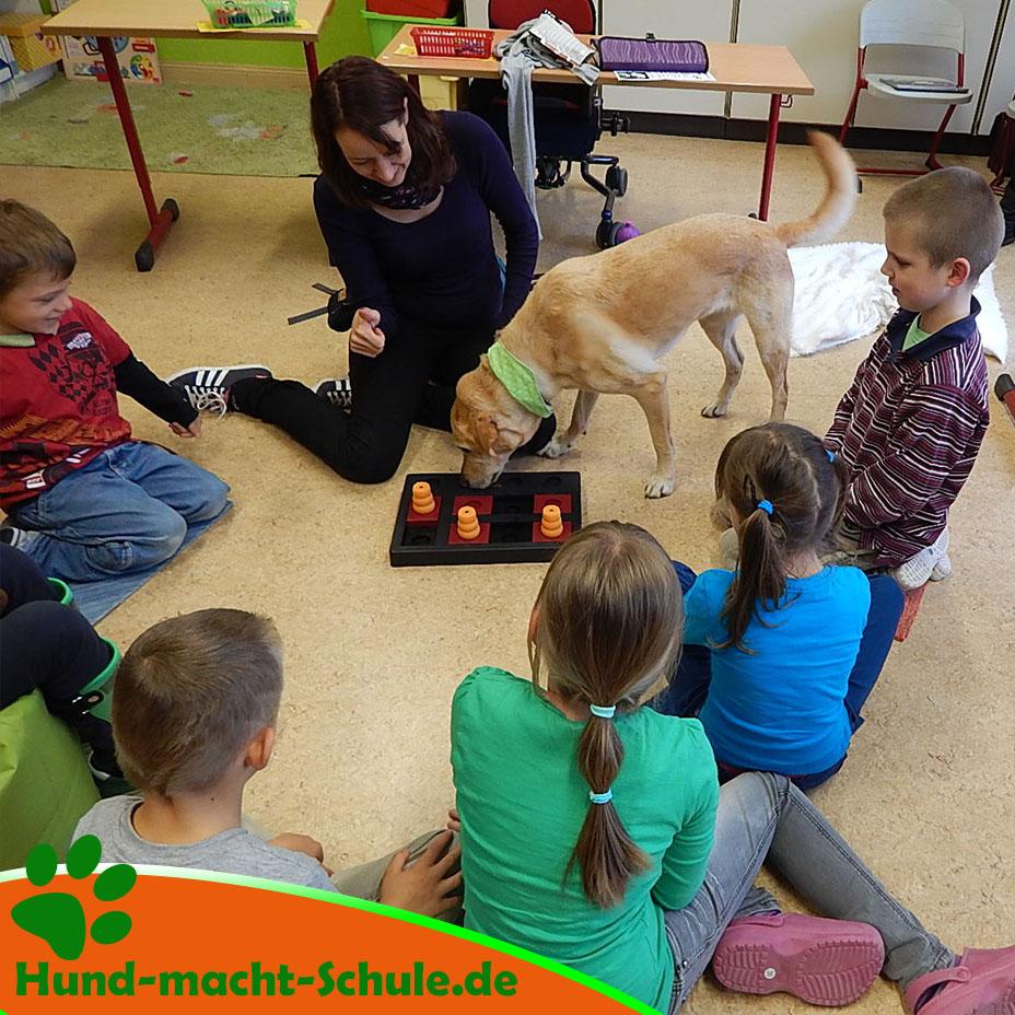 Schulhund Kyra in Sachsen-Anhalt