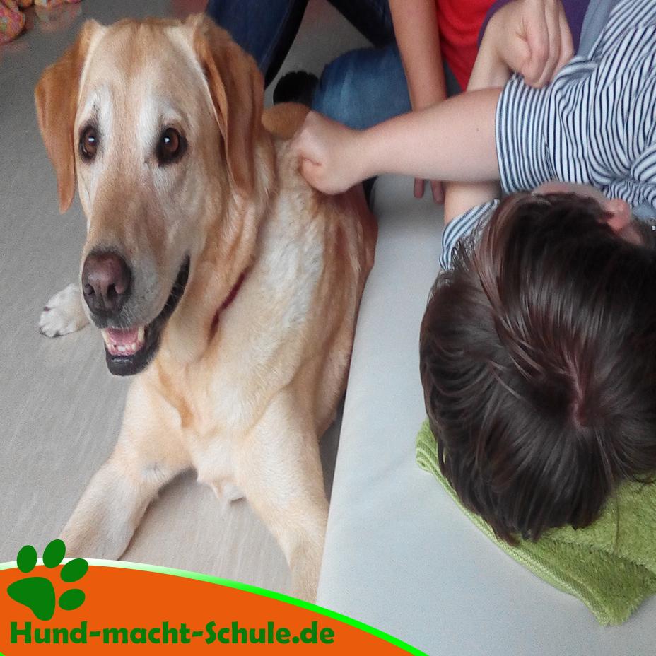 Schulhund Kyra Magdeburg