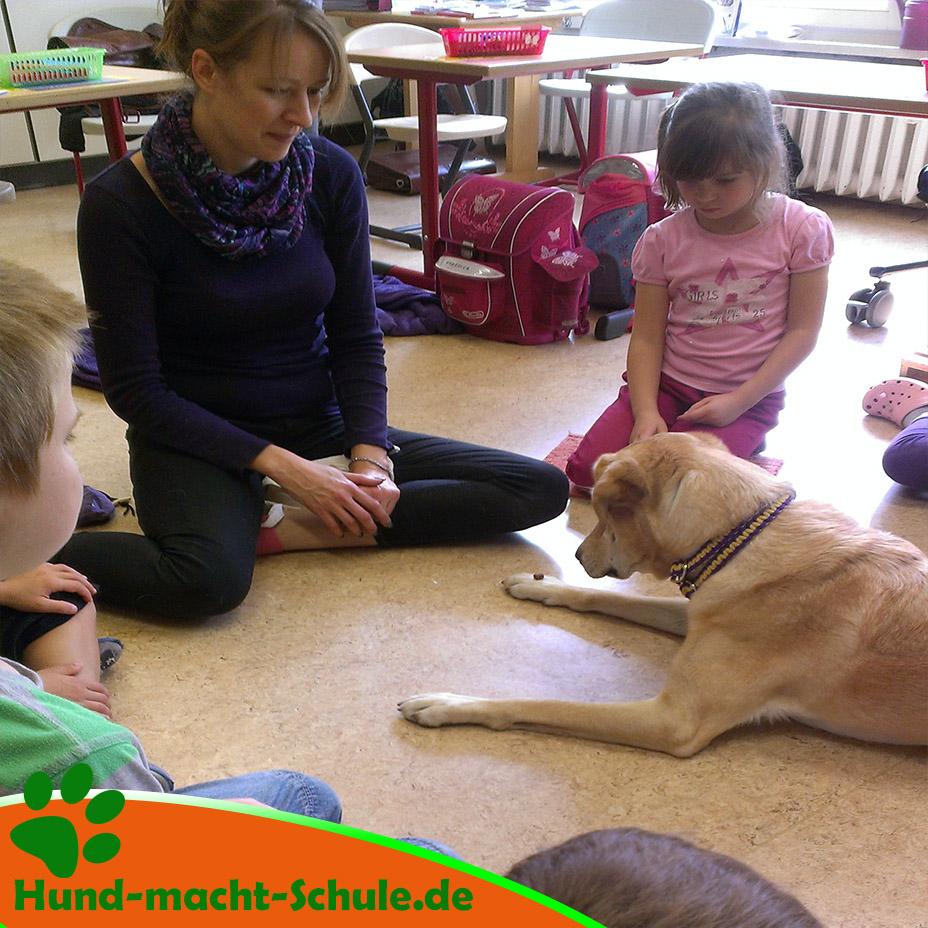Schulhund Kyra