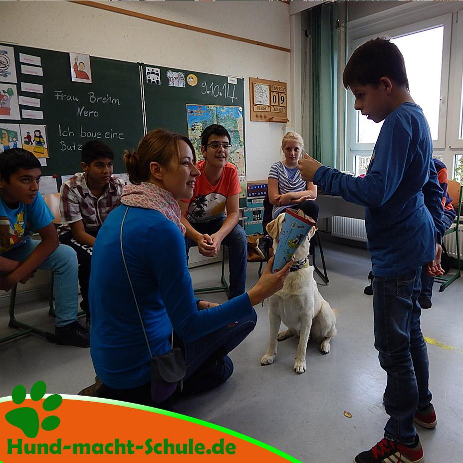 Schulhund Nero10