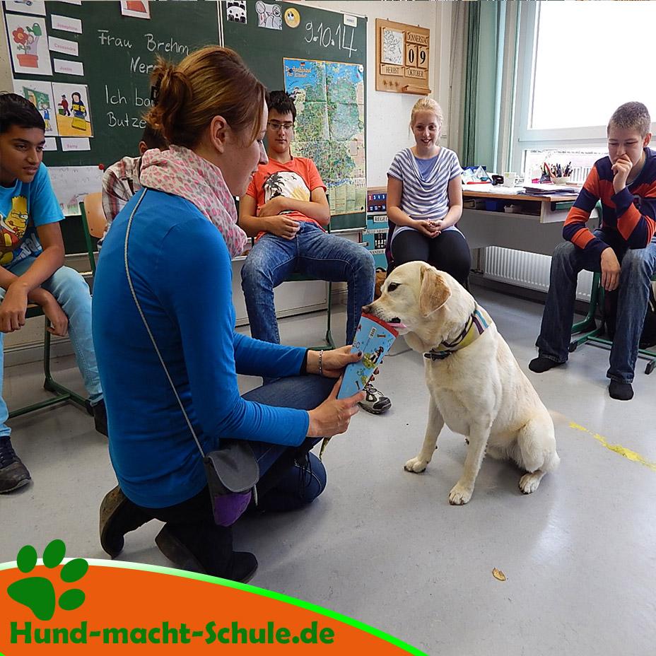Schulhund Nero9