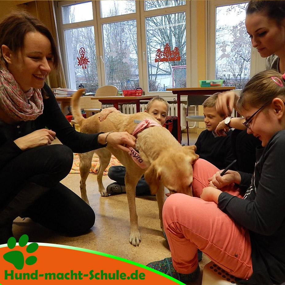 Schulhund Weihnachten2